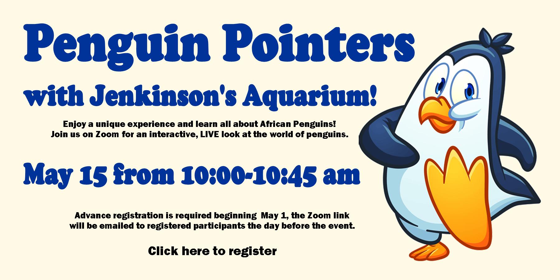 CHD Slides Penguins PNG